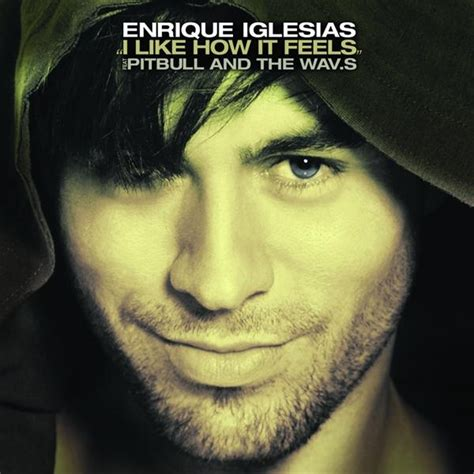 download mp3 from enrique enrique iglesias i like how it feels feat pitbull