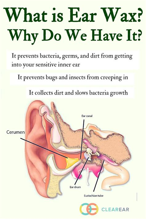 Detoxing Through Ears Wax by But What Is Ear Wax What Causes Ear Wax To Accumulate In