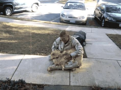 seeing his owner back from deployment aww