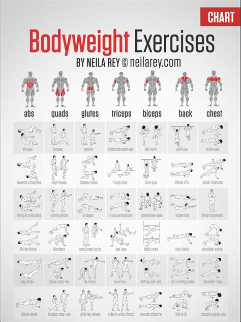 free bodyweight exercise chart hoyles fitness