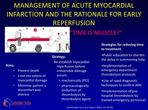 Door Design In India early reperfusion in myocardial infarction