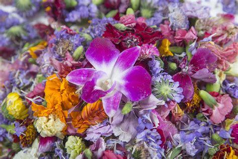 popular spring flowers edible flowers spruce up springtime menus in las vegas