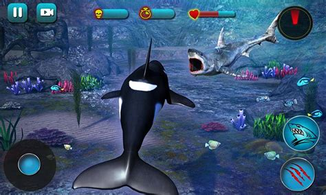 wale gane killer whale beach attack 3d android apps on google play