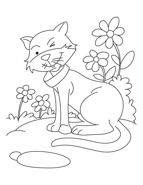 happy cat coloring page twinkle twinkle happy cat coloring pages