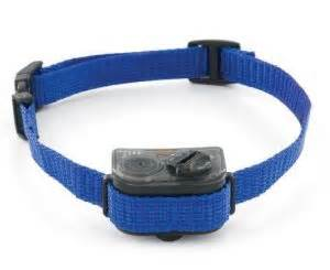 shock collar for dogs petsmart shock collar for small dogs petsmart 4k wallpapers