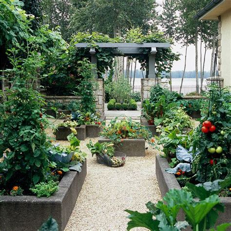 Best Vegetables To Grow In Raised Beds by Raised Garden Beds Grow A Vegetable Garden In Raised Beds