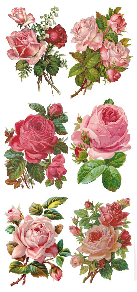 Decoupage Roses - beautiful and pink roses collage