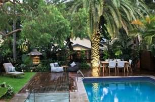 garten palme mit der richtigen palme im garten tropische stimmung schaffen