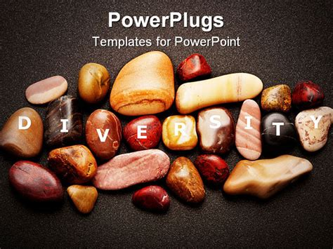Variety Of Smooth Pebbles Of Different Colours Is A Metaphor For Ethnic Diversity Powerpoint Ethnic Powerpoint Templates