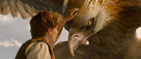 fantastic beasts and where fantastic beasts comic con trailer revealed