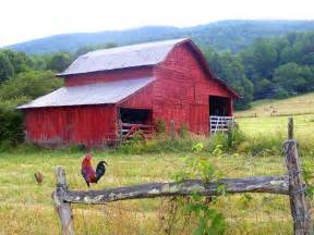 barn artwork barn and rooster by duane mccullough