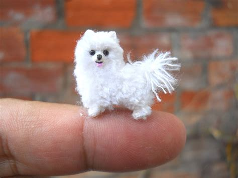 tiny teacup pomeranian miniature teacup pomeranian tiny crochet stuffed animals