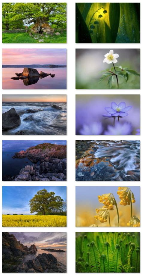 spring themes for windows 10 swedish spring theme for windows download pureinfotech