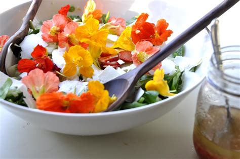 how to make flower food grow your own food easy edible flowers guest post