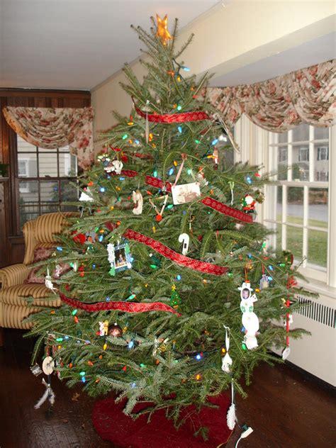 unser amerikanischer weihnachtsbaum foto bild north