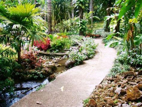 San Jose Botanical Garden Enchanting Costa Rica Orchid Festival 2015 Opens At Else Kientzler Botanical Gardens In Costa Rica