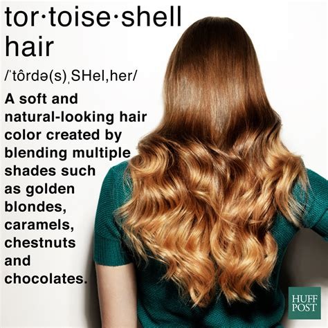 tortoise hair color what the heck is tortoiseshell hair and how do you get it
