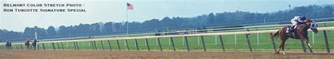 secretariat horse racing s 1973 triple crown champion