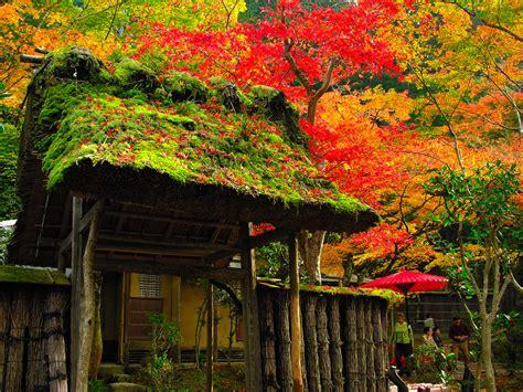 Japanese Garden Pictures Japan Garden Flowers Photo Japanese Garden Flowers