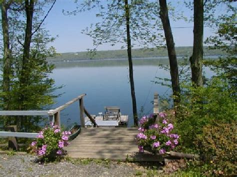 finger lakes cottages stairs for cottages to lake foto di kingtown