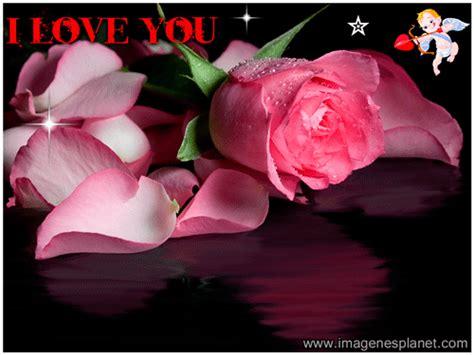 imagenes de corazones y rosas romanticas rosas animadas con movimiento y frases im 225 genes de amor