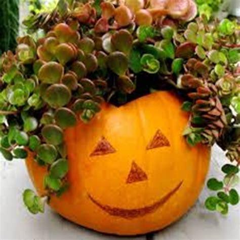 Pumpkin Planter by Wonderful Diy Unique Pumpkin Planter
