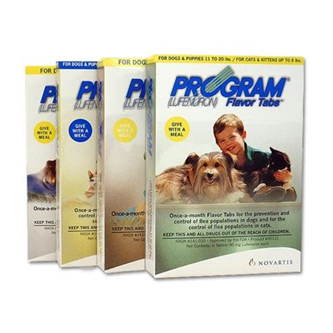 Bravecto Flea Pill For Cats - program pill for fleas unonewsmm