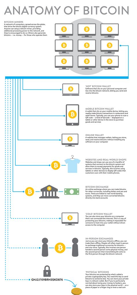 cryptocurrency demystified the ultimate investors guide to bitcoin ripple ico mining top profitable cryptocurrencies and money strategies books best bitcoin explanation infographic we ve seen yet
