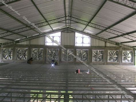 Kipas Untuk Kandang Ayam pilah pilih atap untuk kandang ayam i dhanang closed house