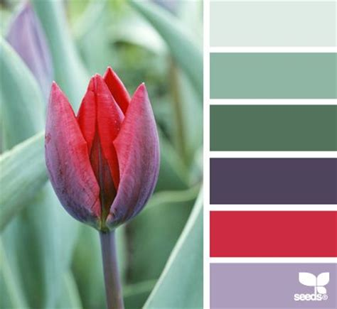 red and green color combination 17 best images about beautiful color palettes on pinterest