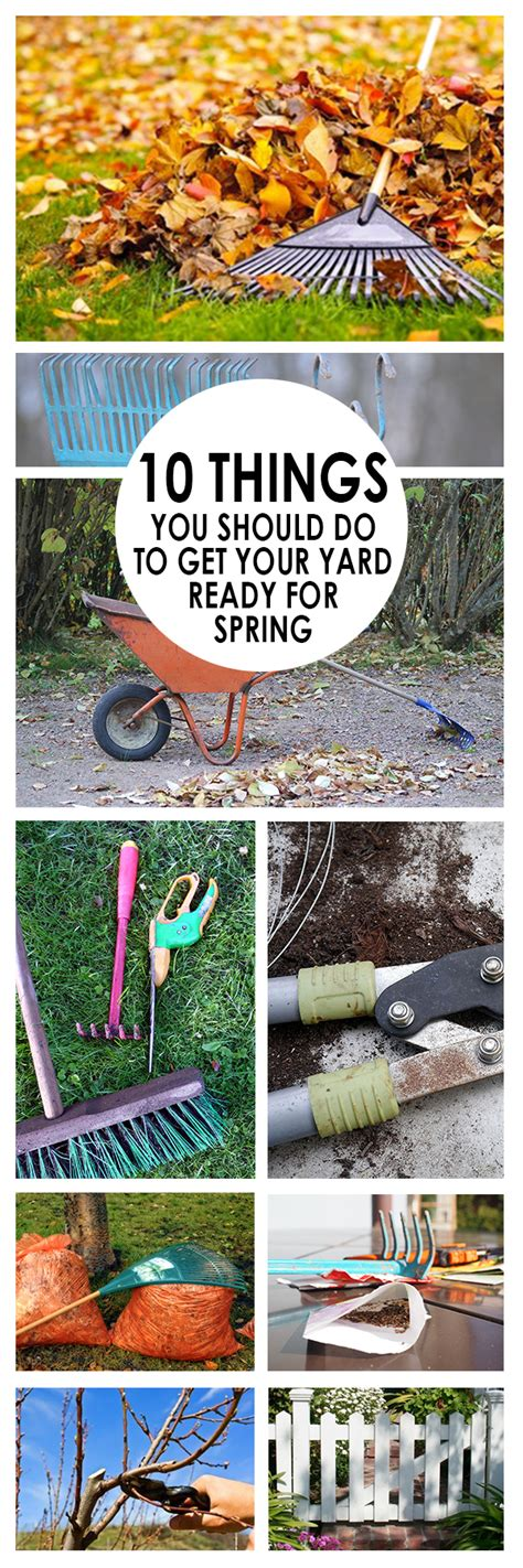 10 Things To Do To Get Ready For by 10 Things You Should Do To Get Your Yard Ready For