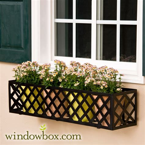 iron window box the lattice window box cage square design wrought iron