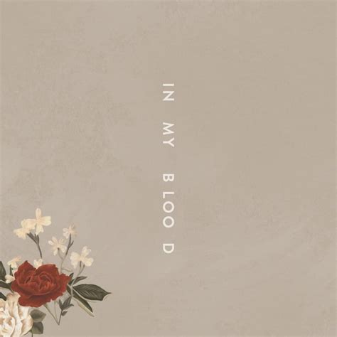 my is blood shawn mendes in my blood mp3 gawker