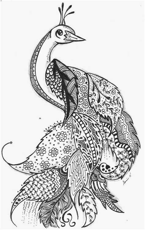 zentangle pattern peacock zentangle doodle bilder bilder land
