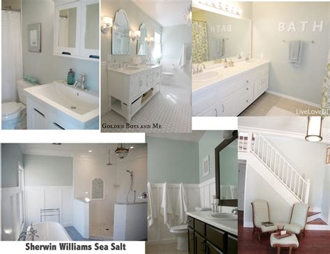 paint color sherwin williams sea sherwin williams paint sea salt home ideas pinterest