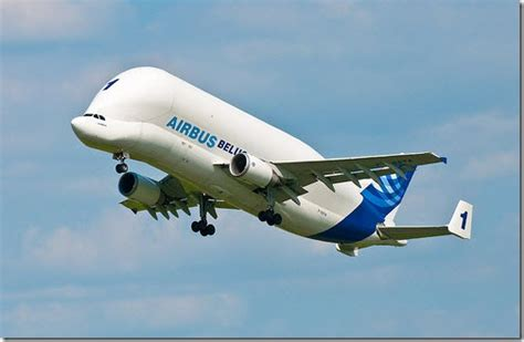 1400 Square Feet In Meters by Aerospace Design The Beluga Airbus A Monster Aircraft