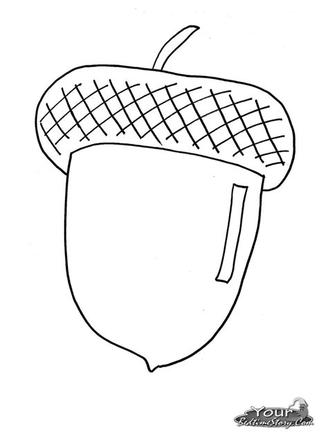 Related Searches For Acorn Coloring Pages Acorn Coloring Pages