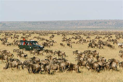 best time to visit zanzibar best time to visit tanzania serengeti zanzibar and