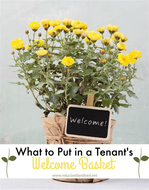what to put in gift baskets what to put in a tenant s welcome basket