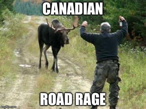 Canadian Moose Meme - moose imgflip