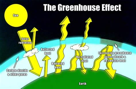 what is the green house effect the green house effect