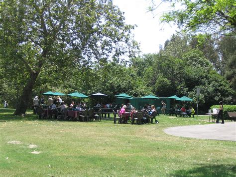 park bench cafe park bench cafe huntington beach central park