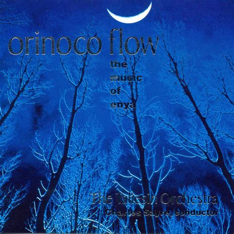 orinoco flow orinoco flow the music of enya album cover by taliesin