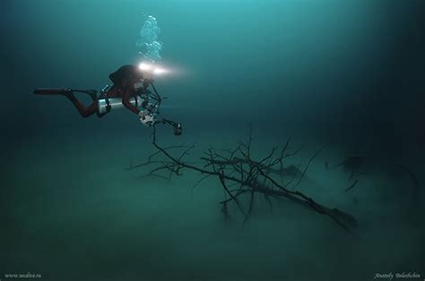 mesmerizing photos mesmerizing photos of cenote angelita an underwater river