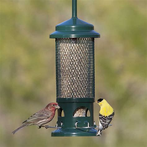 goldfinch feeder plans