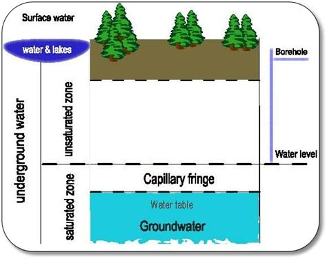 Water Table Definition by Groundwater Gt Capillary Fringe