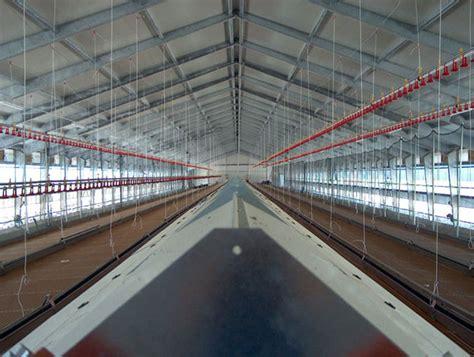 capannoni per allevamento polli dma distribuzione macchine ed attrezzature