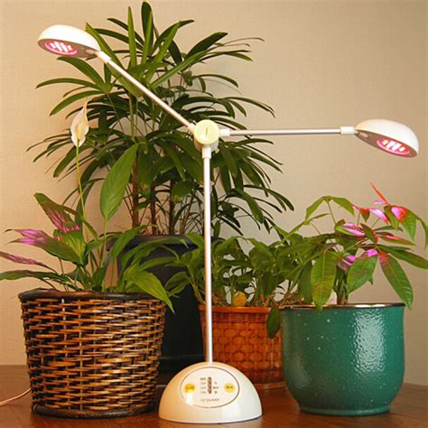 best light for plants the parameters you would like to consider when growing
