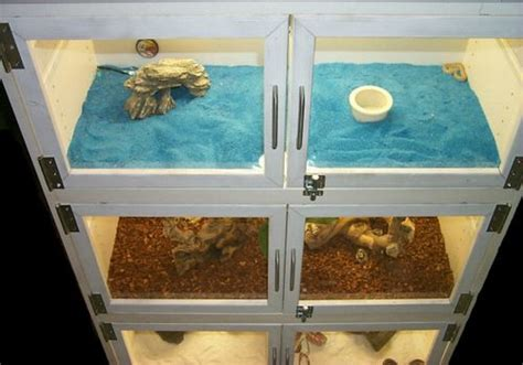 how to remove lizard from room 17 best images about reptile cage diy reptile tanks armoires and doors