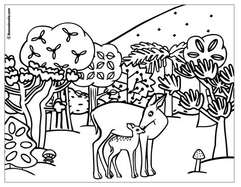 free coloring pages woodland animals forest coloring pages